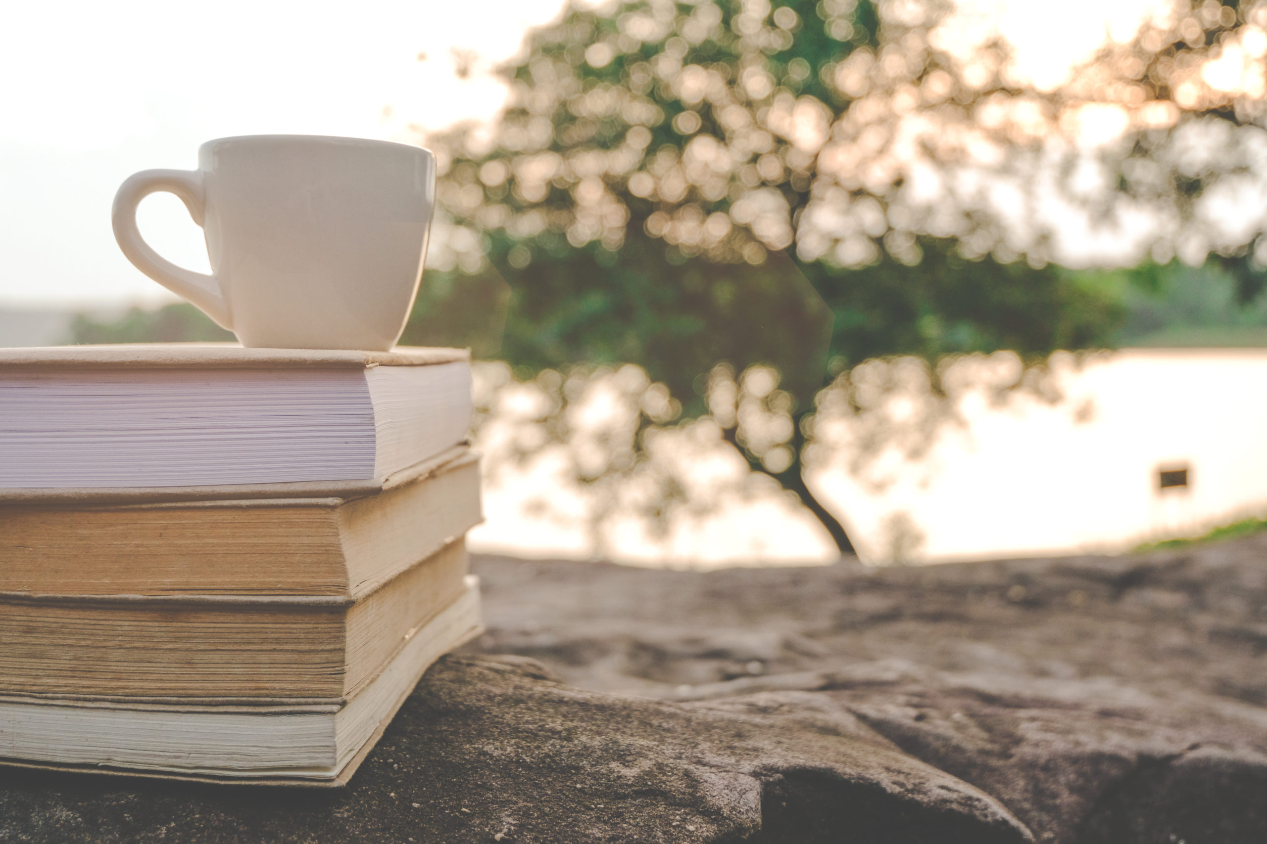 books with water in background and a cup on top